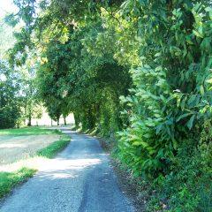 Le Sentier Nature